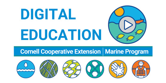 marine digital learning initiative banner DEI Digital Education Initiative