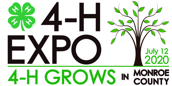 2020 4-h eXPO