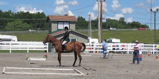 4-H Horse riding