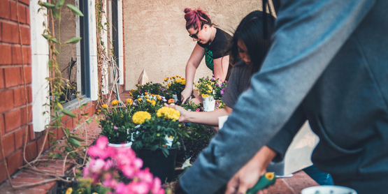 Three people planting flowers in a garden.