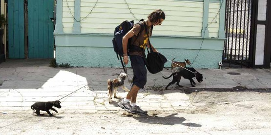 New Orleans, LA 9/8/05 -- Residents who stayed behind with pets are leaving after police told them the pets can go with them. Many residents have been in New Orleans without electricity or tap water for ten days. New Orleans is being evacuated as a result of floods and damage caused by hurricane Katrina.