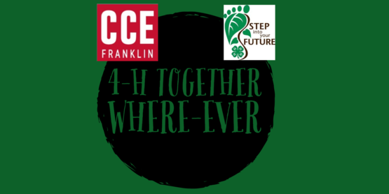 4-h together