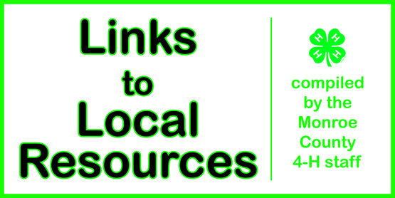 Links to local services banner