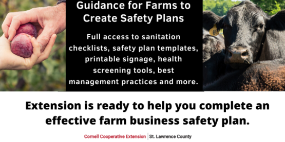 Reach out to our ag educators or click here to search resources.