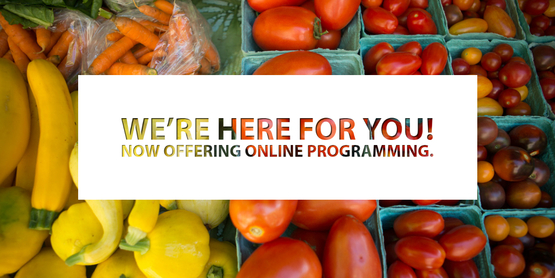 cce supports you! online programming