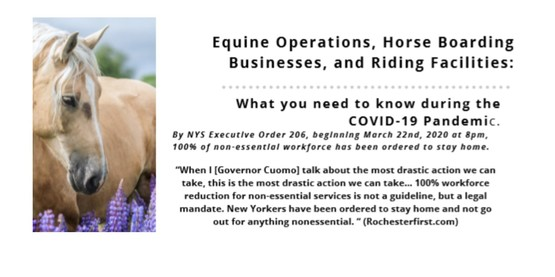 Equine Operations and COVID-19