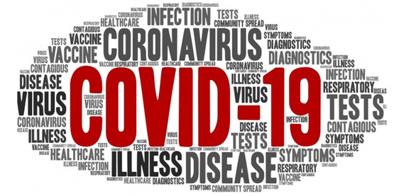 wordle graphic in an oval shape filled with words related to the Cornoavirus
