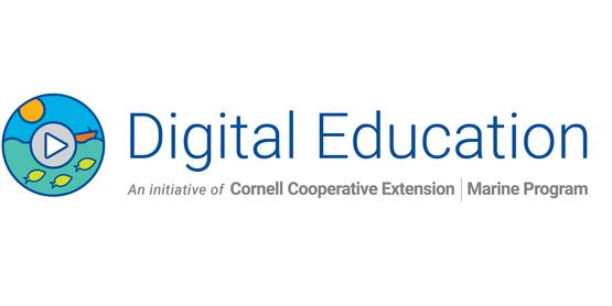 CCE Marine Digital Education header new