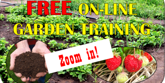 Online Garden Training via zoom meetings