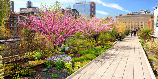 the highline - New York City