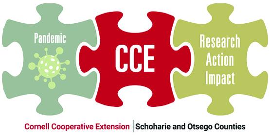 CCE Pandemic Logo