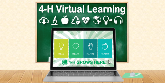 Virtual Learning Header