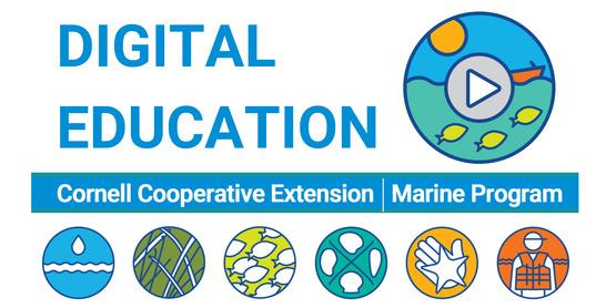 marine digital learning initiative banner DEI Digital Education Initiative