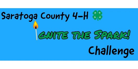 "Saratoga County 4-H ""Ignite the Spark Challenge"""