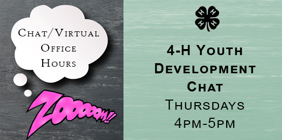 4-H Youth Development Chat