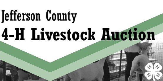 Jefferson County 4-H Livestock Auction