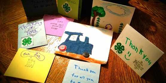 farmer thank you cards
