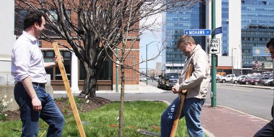 Tree Planting at W. Mohawk
