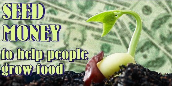 "sprouting seed with money in the background, and text ""Seed Money to help people grow food"""