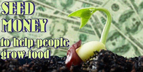 """sprouting seed with money in the background, and text """"Seed Money to help people grow food"""""""