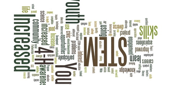 4-H Wordle