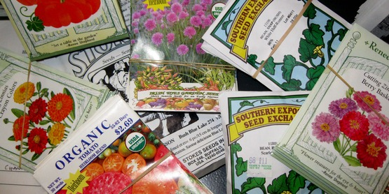 Enjoy looking through seed catalogs and planning your next garden!