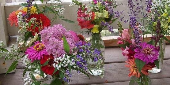 2014 Master Gardener Fall Gala