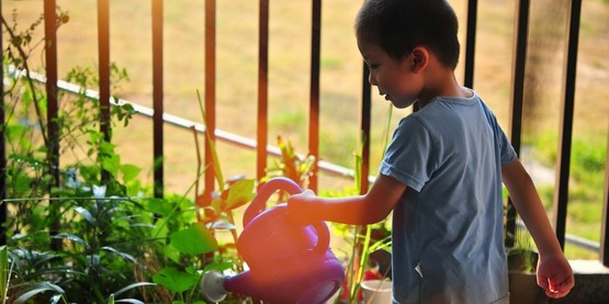 Youth watering plants in garden