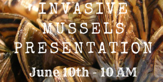 Invasive mussels presentation at 10am on June 10 2020