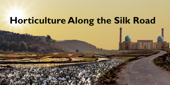 Horticulture Along the Silk Road