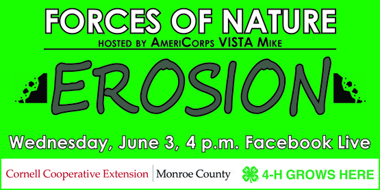 4-H Forces of Nature - Erosion banner