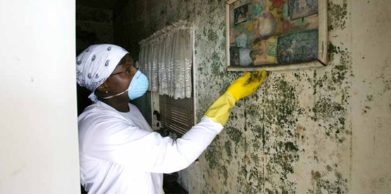 New Orleans resident searches for salvageable items in her home following Hurricane Katrina