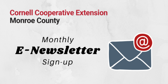 E-Newsletter Signup