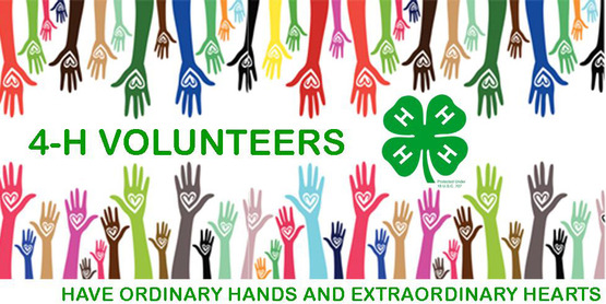 Volunteer to start a 4-H Club in your community.