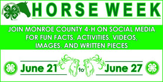2020 4-H Horse Week banner