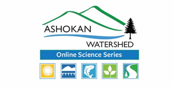 online science series logo
