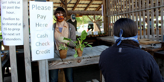 "Vendor at 2020 plant sale wearing facial mask, sign states that ""last sales at :50 past the hour, Pavilion to be cleared at :55 to prep for next set of attendees"""