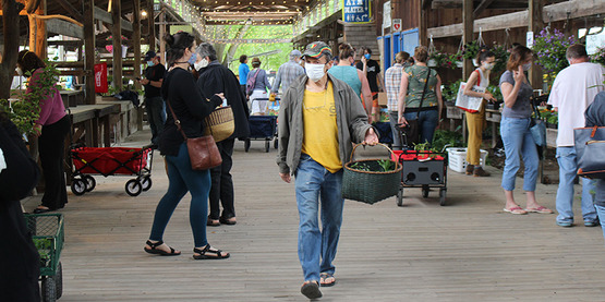 2020 Plant Sale at Ithaca Farmers Market, people walking and shopping in the market paviion