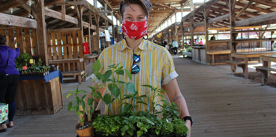 Shopper wearing a mask and carrying a box of plants at the 2020 Plant Sale at the Ithaca Farmers' Market.