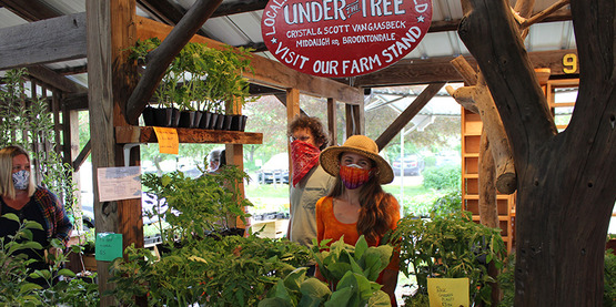 Vendors at Under the Tree nursery booth wearing face masks at the 2020 Plant Sale at the Ithaca Farmers' Market.