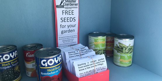 Box of seeds from CCE-Tompkins Master Gardeners in the Tompkins Mutual Aid free food cabinet