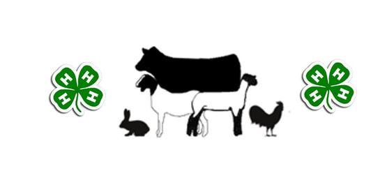 livestock small animal