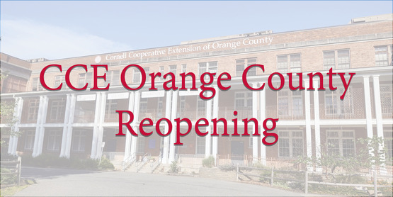 CCE Reopening