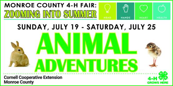 4-H Animal Adventures Week banner