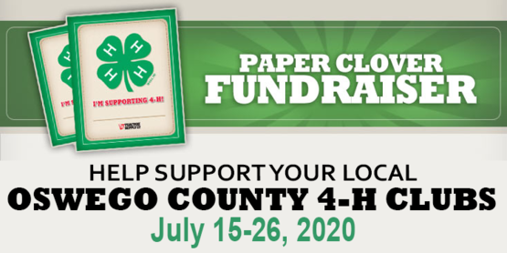 2020 Oswego County TSC Paper Clover Campaign