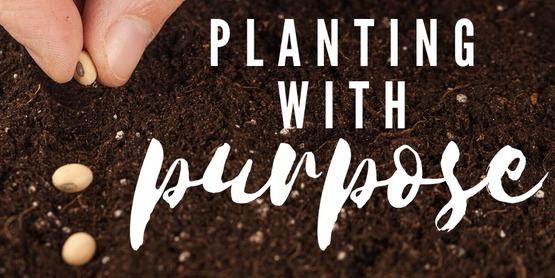 Planting with Purpose