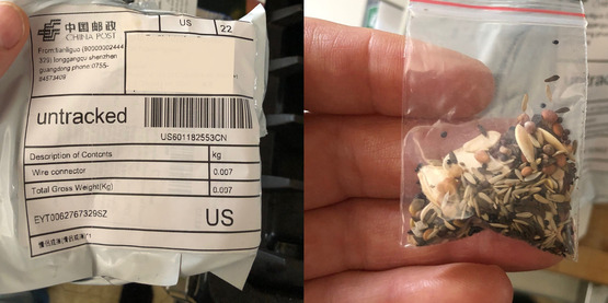 Packaging and bag of seeds mailed from China, unsolicited, mislabeled