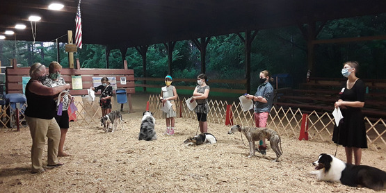 4-H members stand before the judges in the pole bar while showing their dogs in the 2020 Tompkins County Youth Fair.