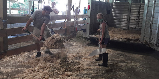 Man and youth mucking out a stall at the 2020 Tompkins County Youth Fair.