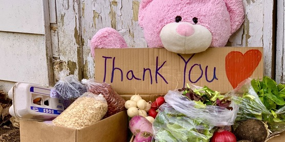 """Tddy bear holding cardboard sign with writing """"Thanks"""" in front of 2 boxes of vegetables from Healthy Food for All CSA"""